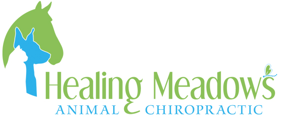 Healing Meadows Animal Chiropractic