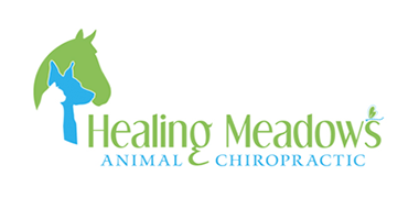 Healing Meadows Animal Chiropractic